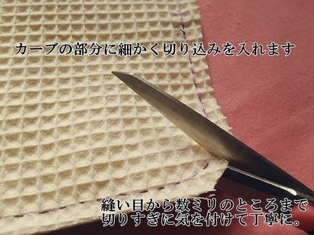 DSC_0977-700.JPG