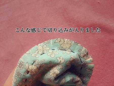 DSC_0978-700.JPG
